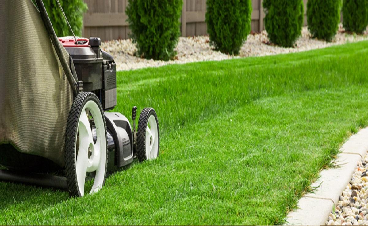 Altavista-page-gardening-cleaning-1200x739